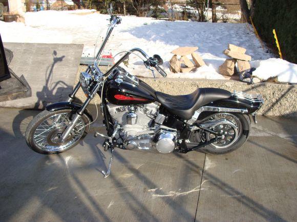 2000 Harley Davidson Fxst Softail Standard